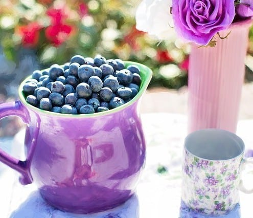 Blueberries have great nutritional properties