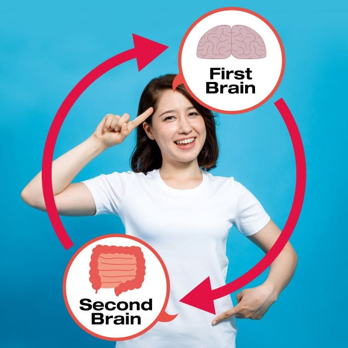 the gut and brain connection